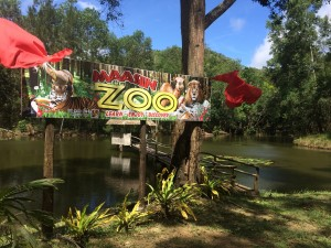 Welcome to Maasin City Zoo